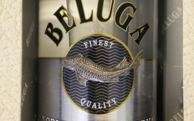 Beluga – The Finest Little Spirit